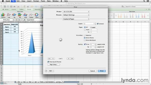 Printing workbooks and charts: Office for Students