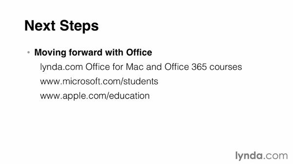 Next steps: Office for Students