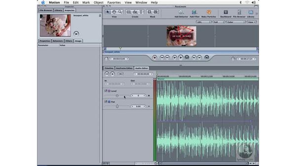 audio editor: Learning Motion