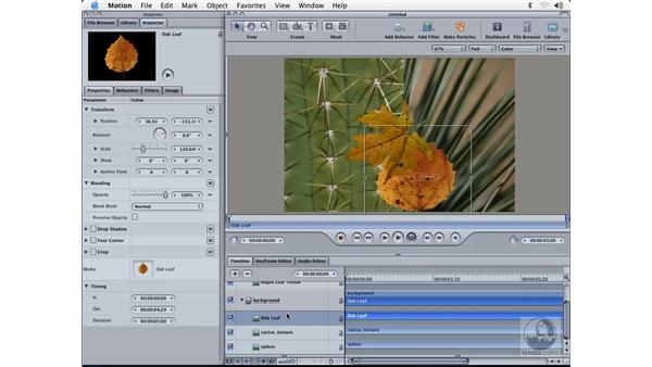 media layers: Learning Motion