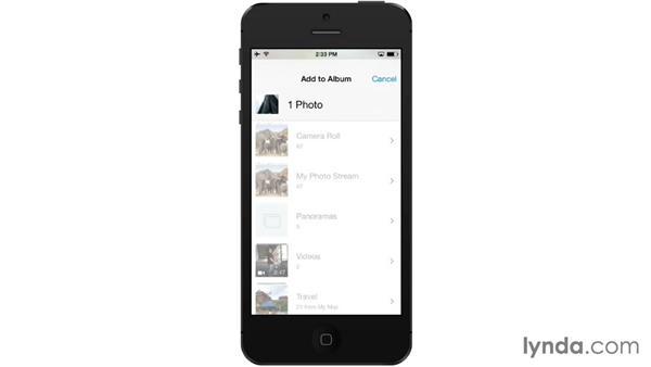 Creating albums: iOS 7: iPhone and iPad Essential Training