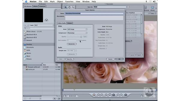 exporting still images: Learning Motion