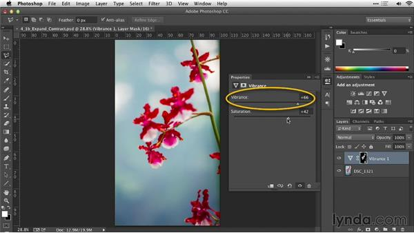 Using Expand and Contract: Practical Photoshop Selections