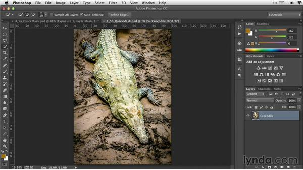 Refining a selection with Quick Mask: Practical Photoshop Selections