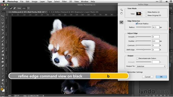 Using the Refine Edge command: Practical Photoshop Selections
