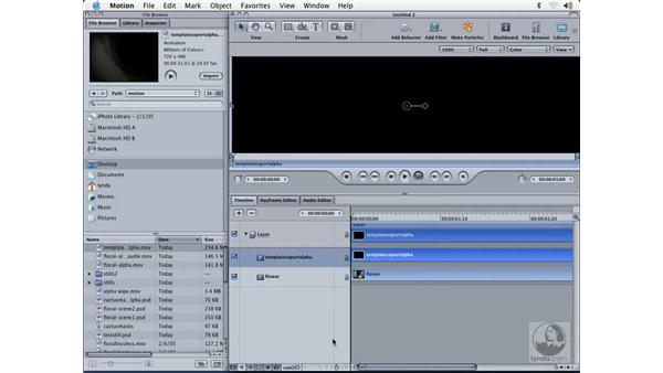 exporting alpha from template: Learning Motion