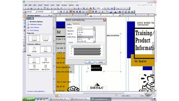 creating custom bullets and modifying numbering: Publisher 2003 Essential Training