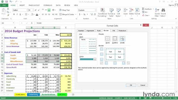 Applying border styles and adjusting gridlines: Excel 2013: Advanced Formatting Techniques