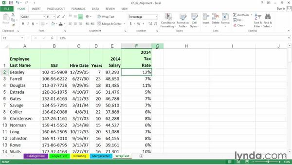 Controlling titles and headings with the Wrap Text and Shrink to Fit options: Excel 2013: Advanced Formatting Techniques