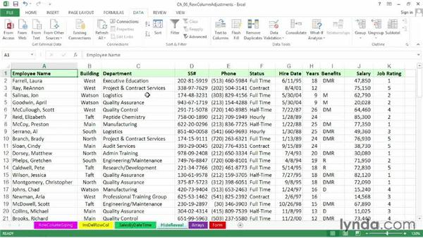 Working with the Hide and Unhide options: Excel 2013: Advanced Formatting Techniques