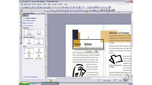 showing special characters: Publisher 2003 Essential Training
