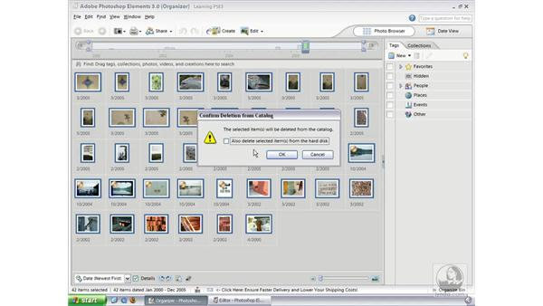 The Organizer's Catalog System (Win): Photoshop Elements 3 Essential Training