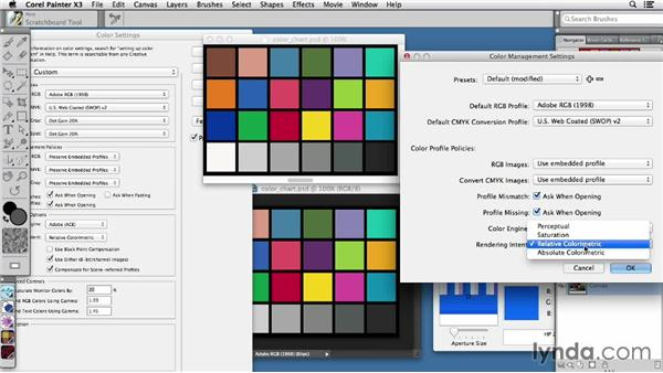 Understanding color management compatibility: Painter X3 Essential Training