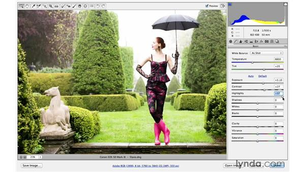 Creating a more expressive photograph with Camera Raw: Photoshop for Photographers: Lighting Effects