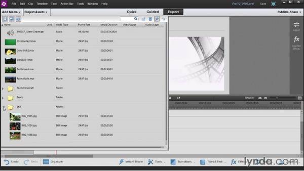 Organize media in your Project Assets panel: Up and Running with Premiere Elements 12