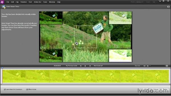 Adjusting your video's color tone with the Auto Smart Tone tool: Up and Running with Premiere Elements 12