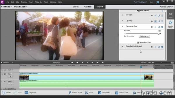 Changing your movie's look and feel with FilmLooks: Up and Running with Premiere Elements 12