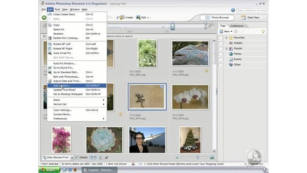 Stacking Photos (Win): Photoshop Elements 3 Essential Training