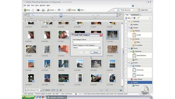Tagging Photos (Win): Photoshop Elements 3 Essential Training