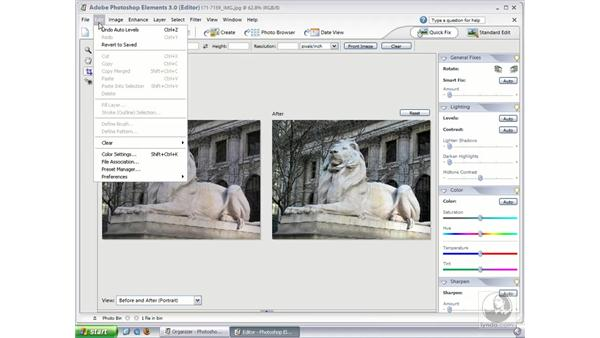 Quick Fix : Photoshop Elements 3 Essential Training