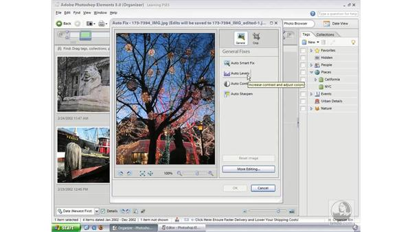 Auto Fix (Win): Photoshop Elements 3 Essential Training
