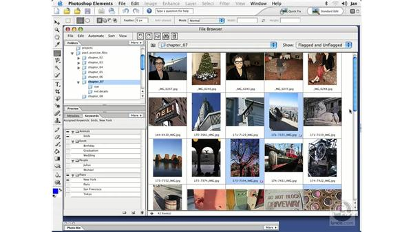 Flagging Files (Mac): Photoshop Elements 3 Essential Training
