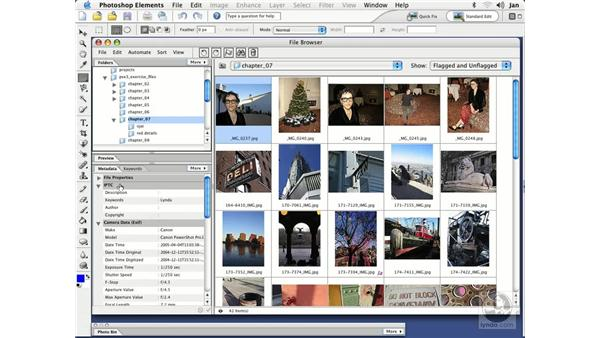 Adding Metadata (Mac): Photoshop Elements 3 Essential Training