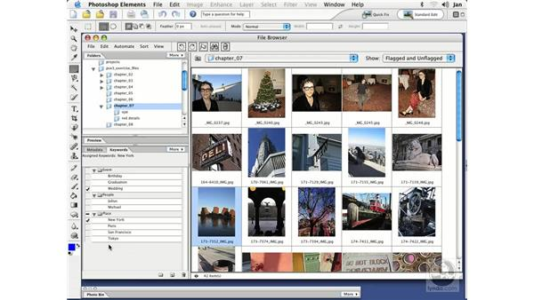 Adding Keywords (Mac): Photoshop Elements 3 Essential Training