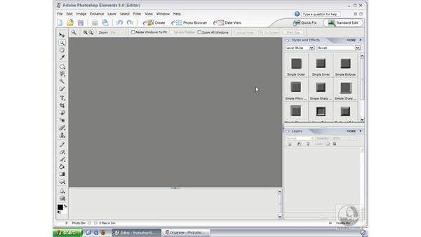 Standard Edit Palettes: Photoshop Elements 3 Essential Training