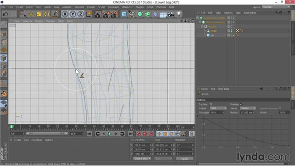 Shaping the lower legs: Modeling Characters in CINEMA 4D