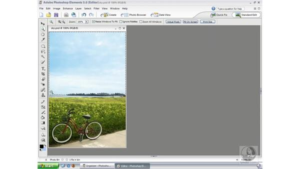 Selection Brush: Photoshop Elements 3 Essential Training