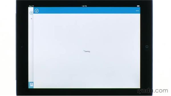 Setting OWA for iPad options: Outlook Web App (OWA) 2013 Essential Training