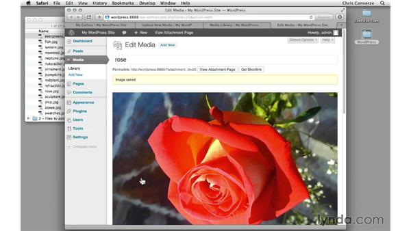 Preview the final project: Creating a Photo Gallery in WordPress with jQuery