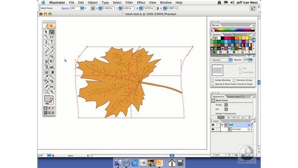 Mesh Distortion: Illustrator CS2 Essential Training
