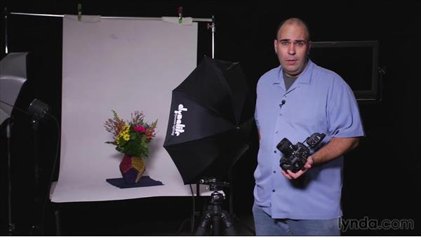 Quick-release mounting for handheld shooting: Tethered Shooting Fundamentals (2014)