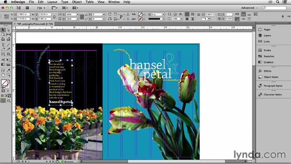 What you should know before watching this course: Print Production Essentials: Prepress and Press Checks