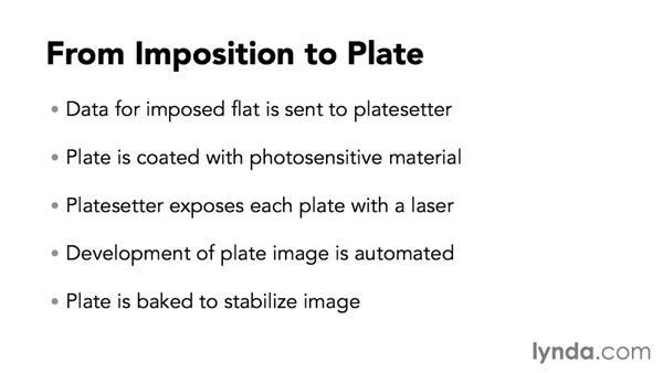 Platemaking: Print Production Essentials: Prepress and Press Checks
