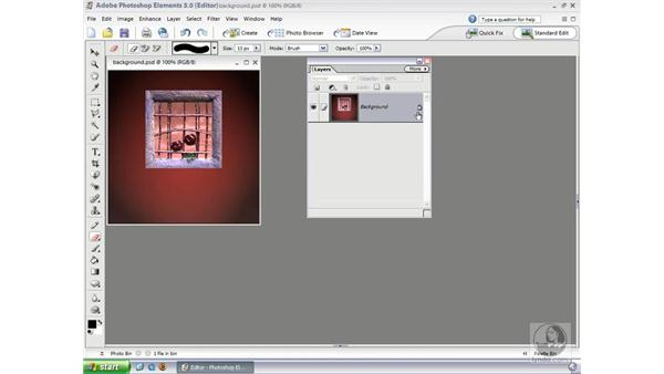 The Background Layer: Photoshop Elements 3 Essential Training