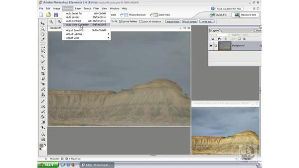 Auto Adjustment: Photoshop Elements 3 Essential Training