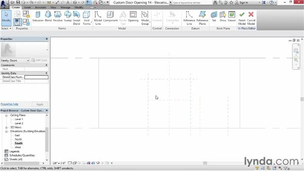 Creating a custom door opening: Revit for Interior Design: Interior Walls