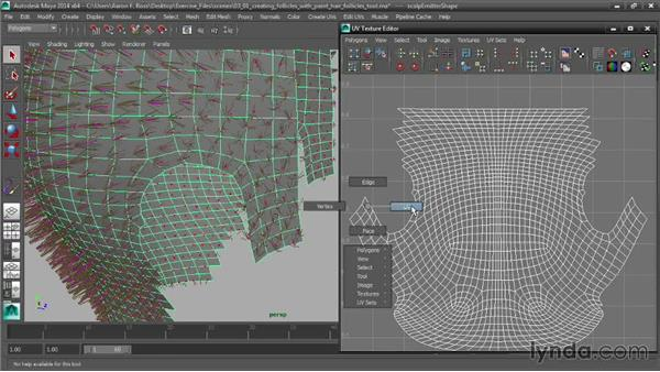 Creating follicles with the Paint Hair Follicles tool: Creating Hair with Maya nHair