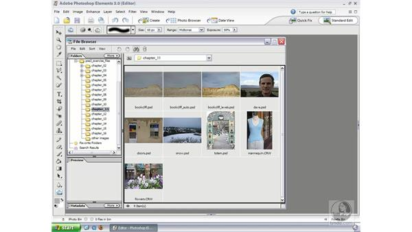 Understanding Camera Raw: Photoshop Elements 3 Essential Training
