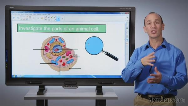 Reveals: Order and reveal: SMART Board Essential Training