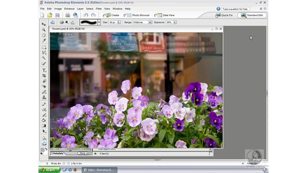 : Photoshop Elements 3 Essential Training
