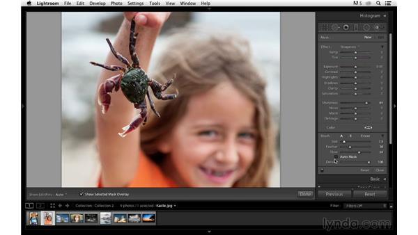 Learning Adjustment Brush shortcuts: Photoshop CC for Photographers: Sharpening