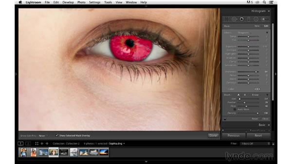 Sharpening eyes in a portrait: Photoshop CC for Photographers: Sharpening