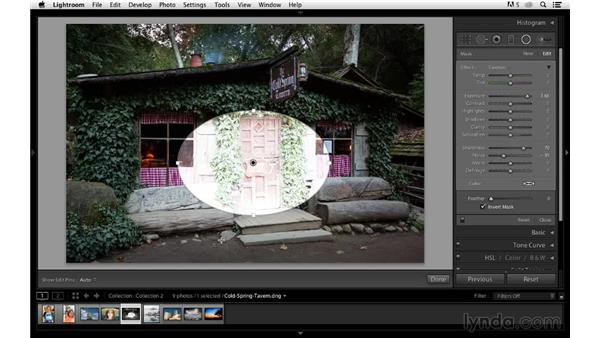 Sharpening large areas with the Radial filter: Photoshop CC for Photographers: Sharpening