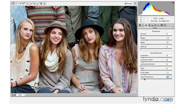 Applying Camera Raw sharpening as a filter: Photoshop CC for Photographers: Sharpening