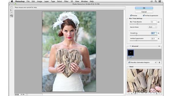 Shake Reduction: Advanced controls: Photoshop CC for Photographers: Sharpening
