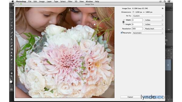 Recording a sharpening action: Photoshop CC for Photographers: Sharpening